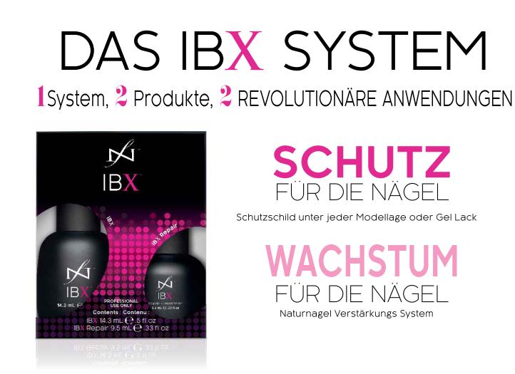 ibx-2